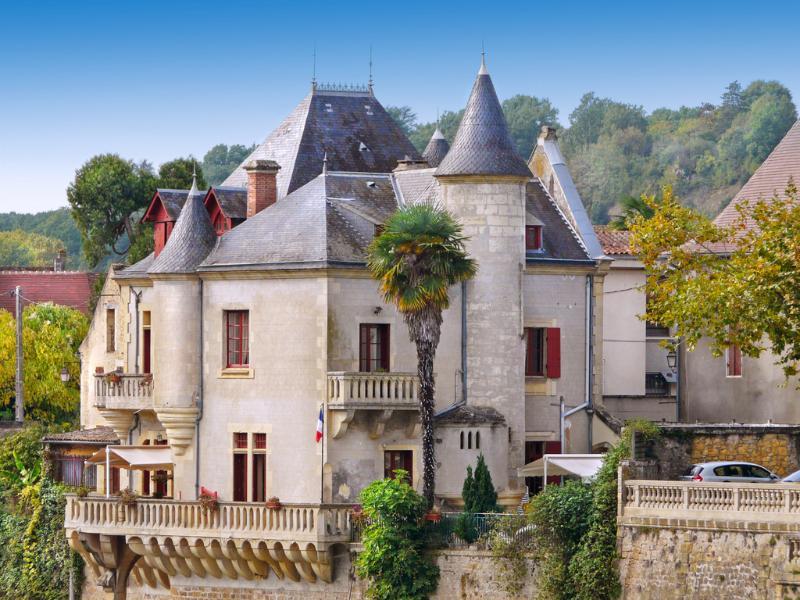 Chateau des Cygnes - Image 1 - Lalinde - rentals
