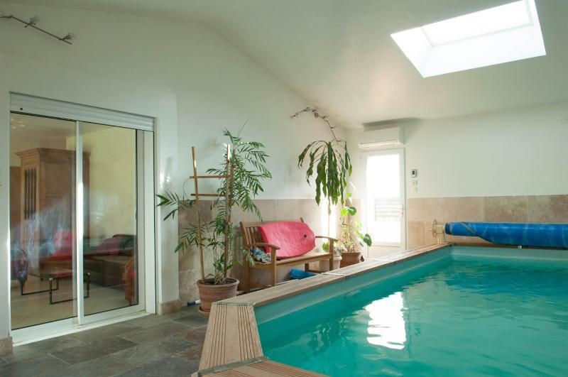 La Petite Maison sous les Pins- Pet-Friendly 2 Bedroom House with a Pool - Image 1 - Aix-en-Provence - rentals