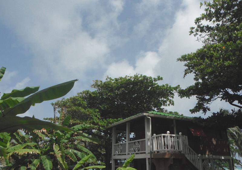 Treehouse Escape - Treehouse Overlooking  Beach - Corn Islands - rentals