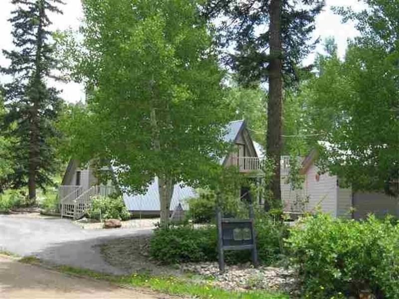 Pinecone outside - Pinecone Cabin - Durango - rentals