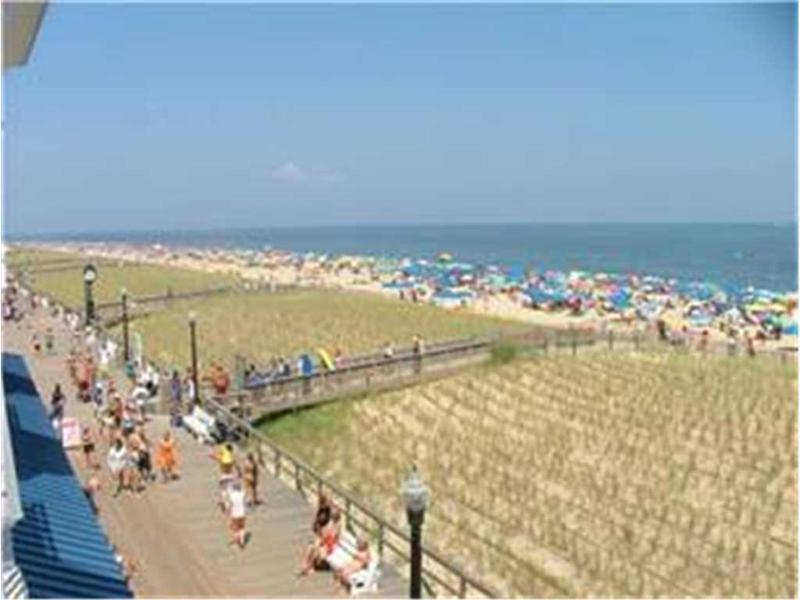 313 Blue Surf - Image 1 - Bethany Beach - rentals