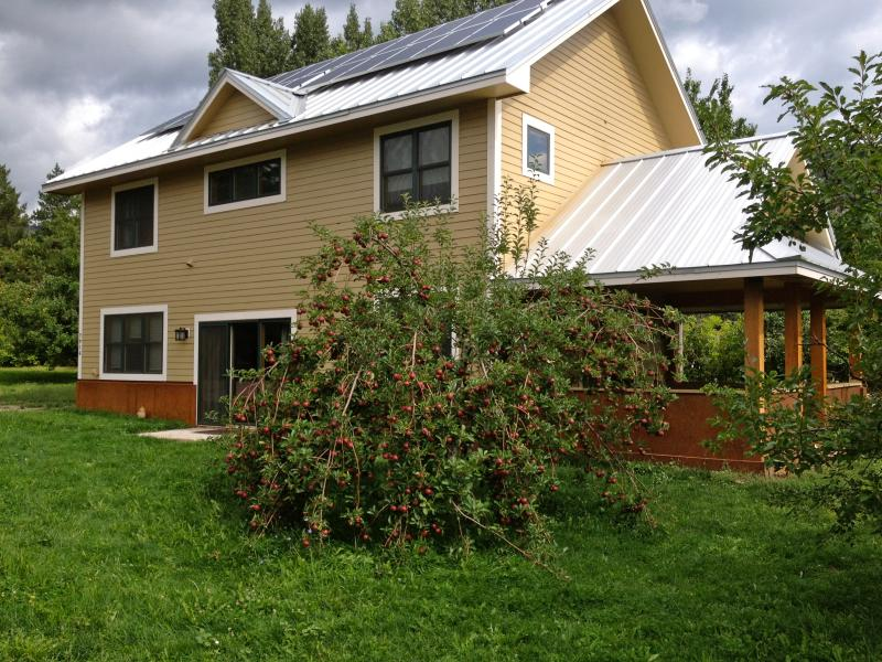 The Cider House with apple tree full in the fall - Cider House - Great Animas Valley Location - Durango - rentals