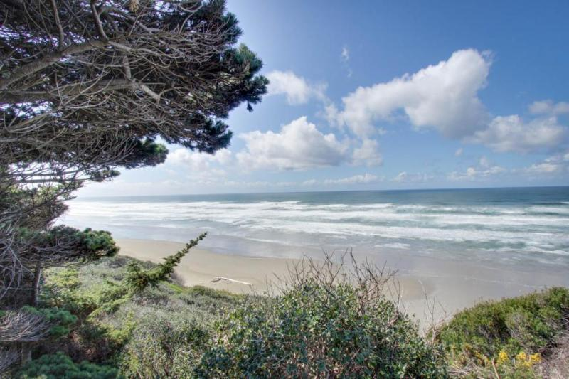 Oceanfront, dog-friendly, secluded home near golf & beaches - Image 1 - Bandon - rentals