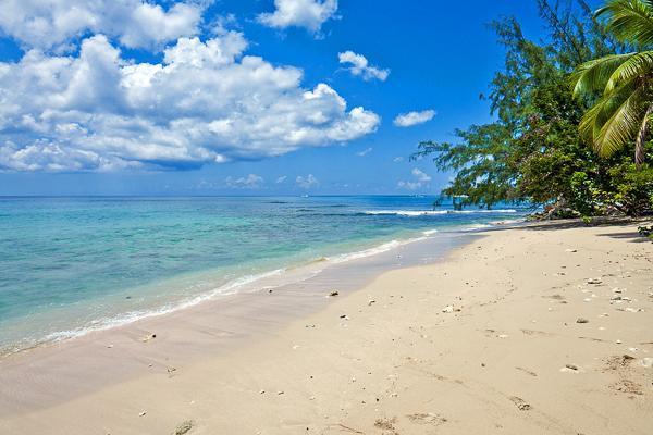Beachfront villa on Gibbs Beach, West Coast Barbados. WCV ALO - Image 1 - Barbados - rentals