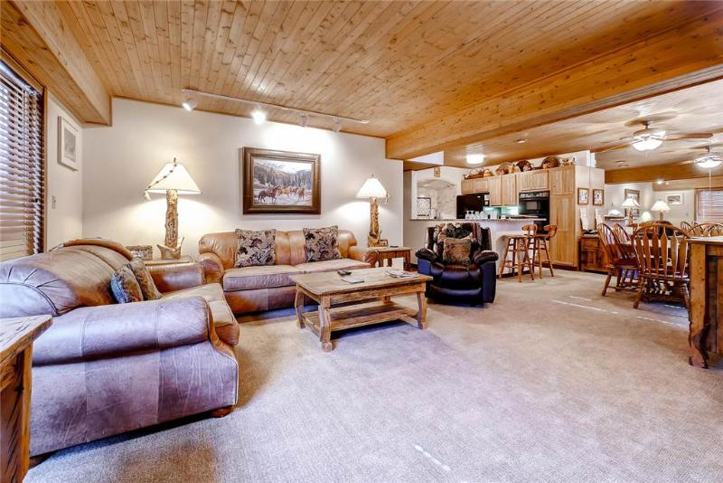 Dulany 203 - Image 1 - Steamboat Springs - rentals