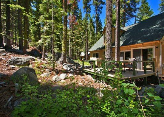 Great Tahoe cabin in the Pines, new back deck, hiking/biking trails close by - Image 1 - Kyburz - rentals