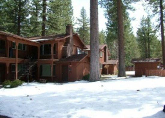 V18-Great upgraded condo with summer pool, half block to free ski shuttle, walk to restuarants - Image 1 - South Lake Tahoe - rentals