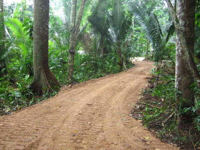 Take the road to relaxation or adventure with off grid living in the jungle - Jungle Adventure in Belize Eco Village - Benque Viejo del Carmen - rentals