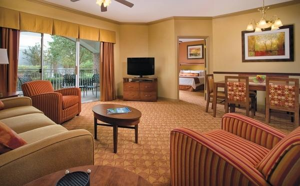 Living Room area - 5 minutes from Grand Ole Opry, with indoor pool - Nashville - rentals