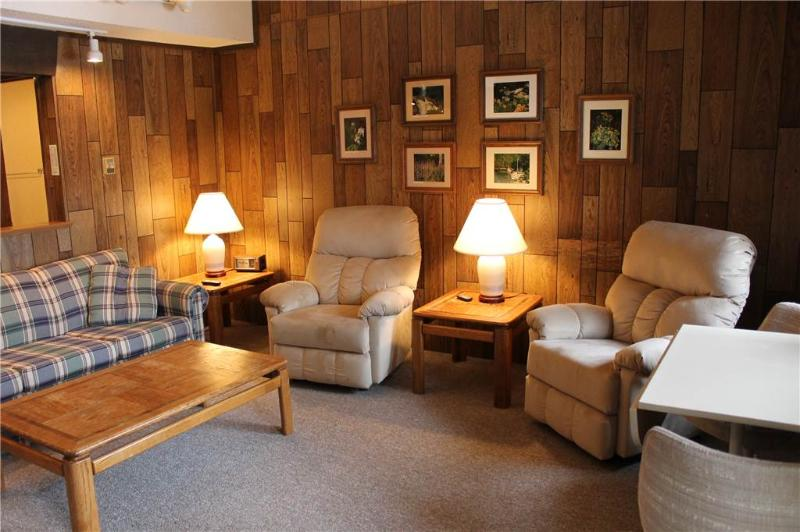 Located at Base of Powderhorn Mtn in the Western Upper Peninsula, A Trailside Condo with a Shared Hot Tub & Allows Dogs - Image 1 - Bessemer - rentals