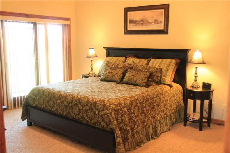 Pagosa Springs, CO Luxury townhome T101 - Image 1 - Pagosa Springs - rentals