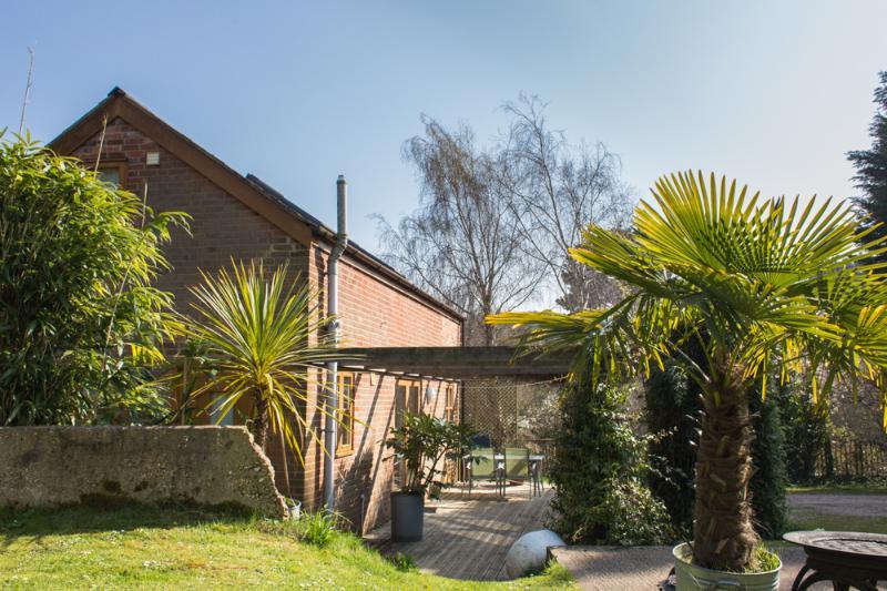 Large tropical garden - Ralph's Spa Barn  Isle of Wight - Newport - rentals