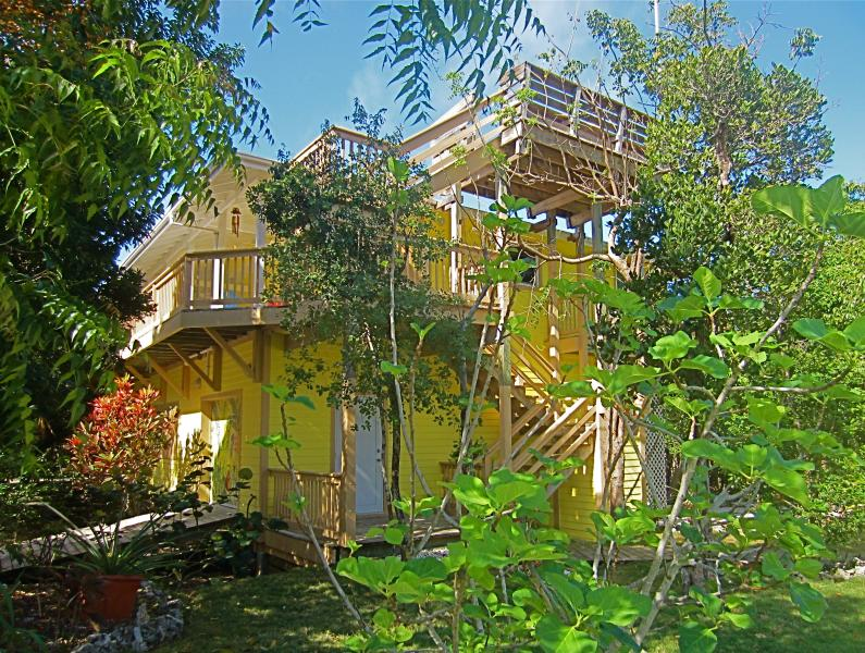 Gone Bananas nestled in the treetops - Luxury Home on Secluded Island - Lubbers Quarters Cay - rentals