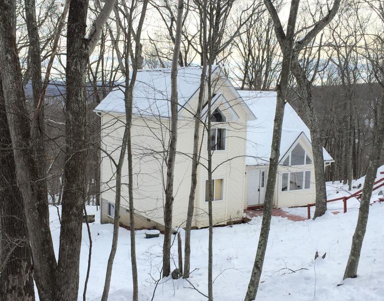 Modern & Cozy House In Bushkill - Image 1 - Bushkill - rentals