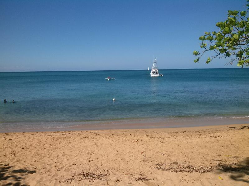 NEAT HOUSE FOR RENT NEAR BEAUTIFUL BEACHES - Image 1 - Rincon - rentals