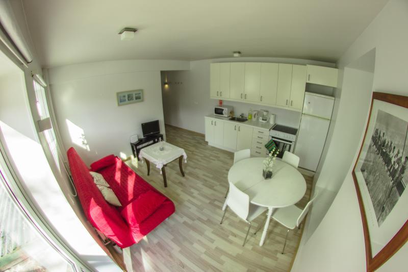 Downtown apartment- One bedroom medium - Image 1 - Reykjavik - rentals