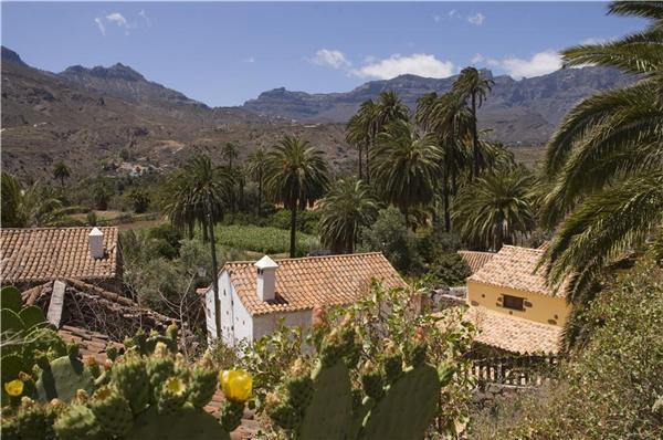 Boutique Hotel in El Ingenio - 78022 - Image 1 - Santa Lucia - rentals