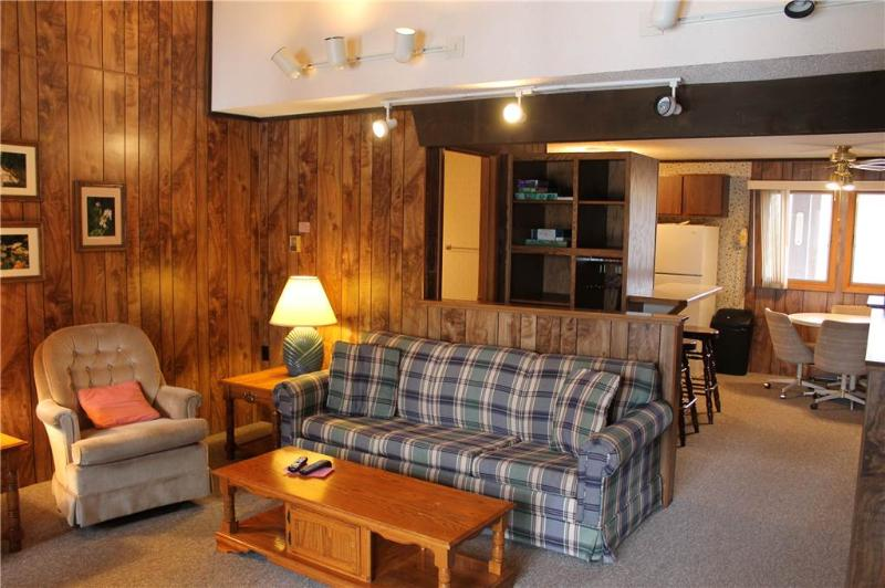 Located at Base of Powderhorn Mtn in the Western Upper Peninsula, An Affordable Trailside Condo with a Shared Hot Tub & Allows Dogs - Image 1 - Bessemer - rentals