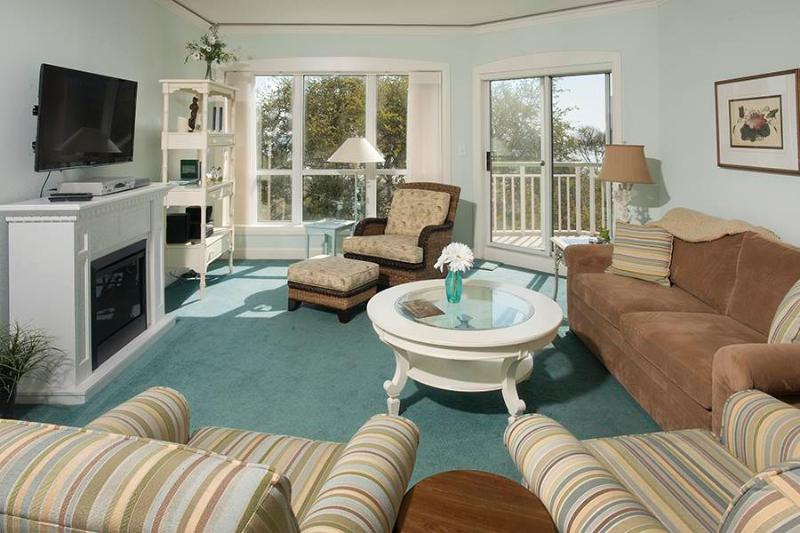 Windsor Place II 2516 - Image 1 - Hilton Head - rentals