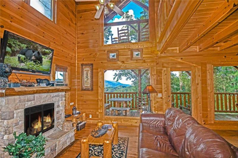 Bear Necessities At The Preserve - Image 1 - Pigeon Forge - rentals