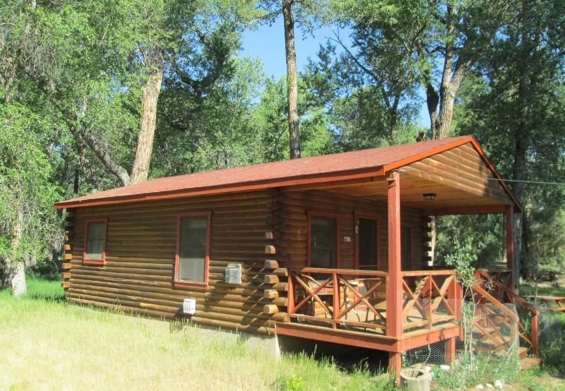 Woodland Brook Wintersong – Buena Vista, CO Cabin 4 - Image 1 - Buena Vista - rentals