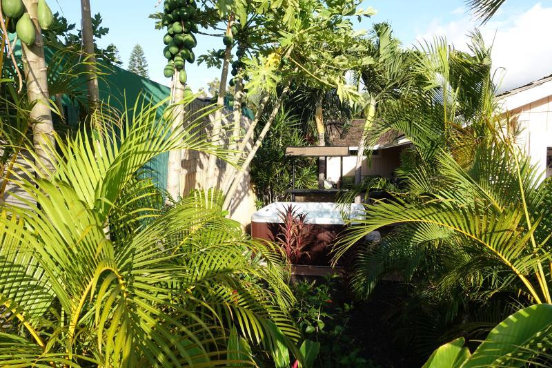 Your Kihei Garden Oasis - Family friendly house w/ hot tub walking distance - Kihei - rentals