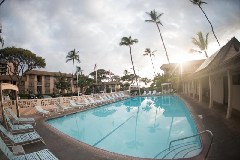 Kihei Kai Nani lovely Olympic size pool - HIGH seas open  MauiVista KiheikaNani 1/w Ocean V - Kihei - rentals