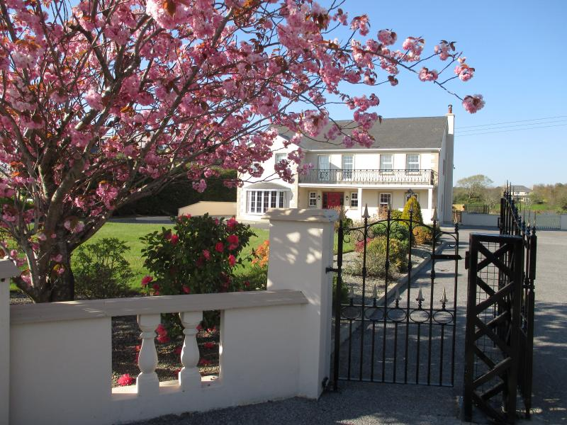 Glensheahan House. 10 minute drive to Killarney town Center - Spacious 8 BR  Luxury House  2 miles from Killarney Town - sleeps 15- Free WiFi- - Killarney - rentals