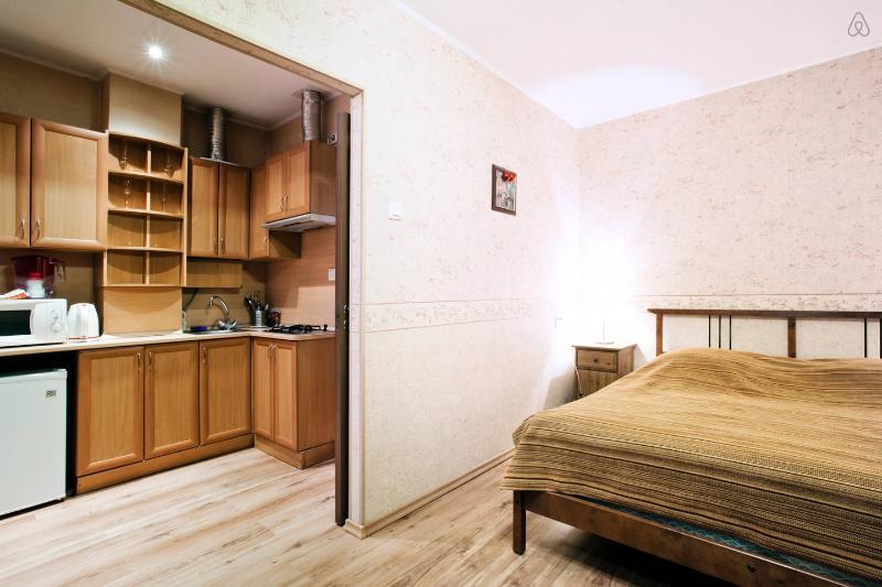uliza Gorohovaya 33A - cozy Studio - Image 1 - Saint Petersburg - rentals