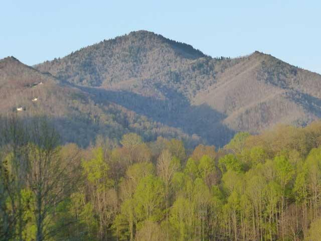 Nice mountain view from deck - Chalet de montagne - Maggie Valley - rentals
