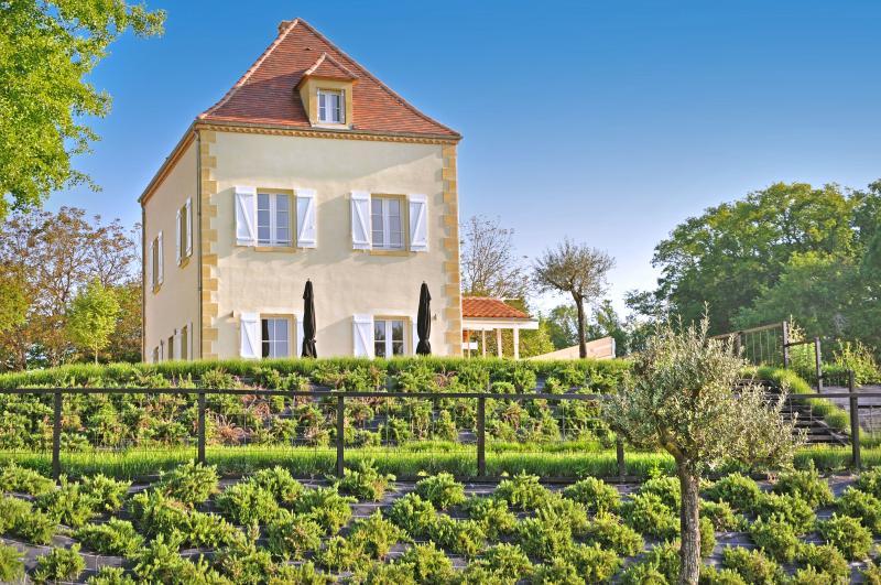 Chateau les Oiseaux - Image 1 - Saint-Agne - rentals