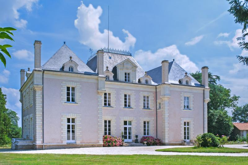 Chateau Anais - Image 1 - La Haye Fouassiere - rentals