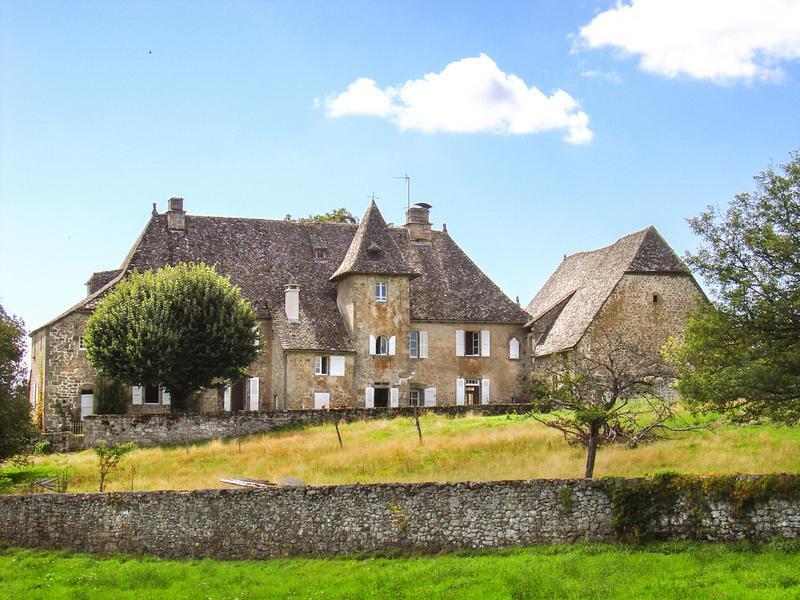 Chateau De Camiller - Image 1 - Drugeac - rentals