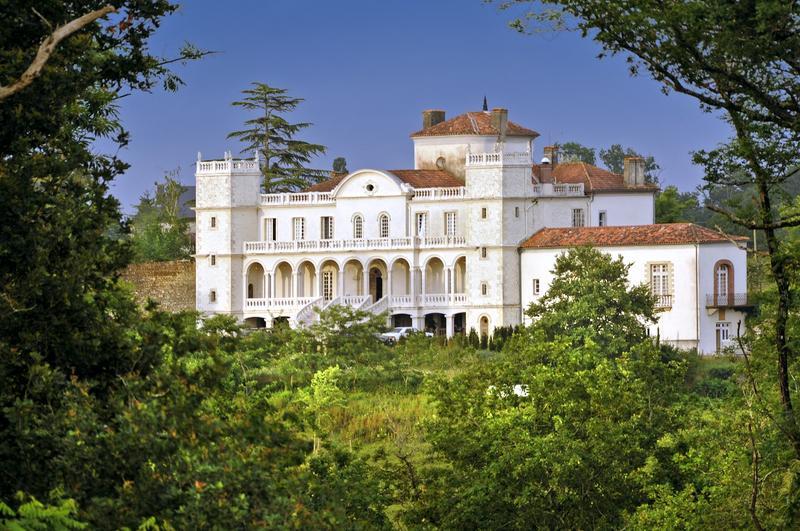 Chateau De Castet - Image 1 - Saint Sever - rentals