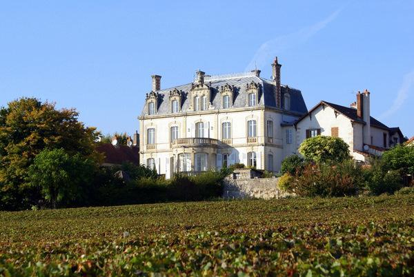 Chateau De Naugues - Image 1 - Mercurey - rentals