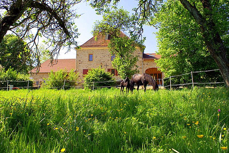 Chateau Beaucharm - Image 1 - Bourbonne-les-Bains - rentals