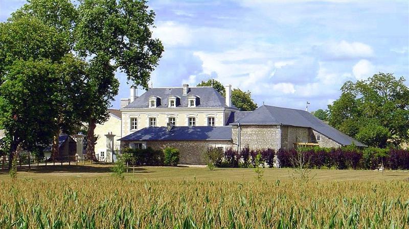 Chateau De Grazay - Image 1 - Chaveignes - rentals