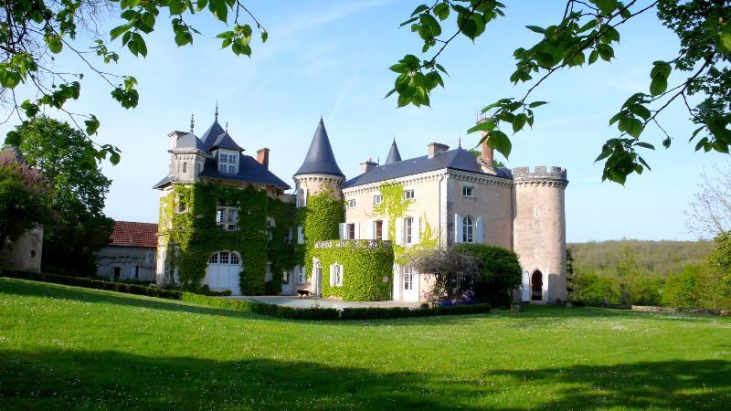 Chateau St Victor - Image 1 - Ingrandes - rentals