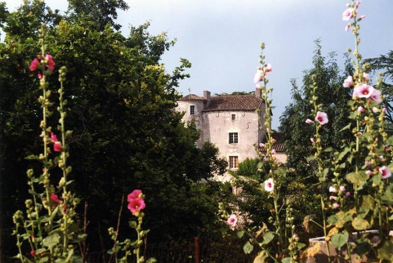 Chateau D'ax - Chateau Only - Image 1 - Saint-Daunes - rentals