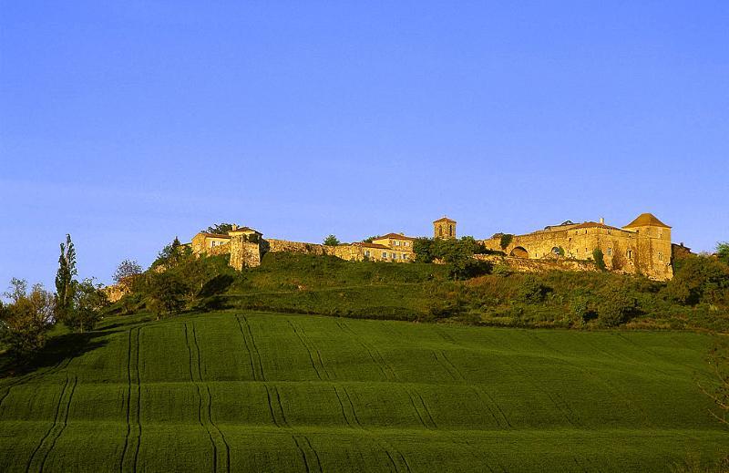 Castelnau De Fezensac - Image 1 - Castera-Lectourois - rentals