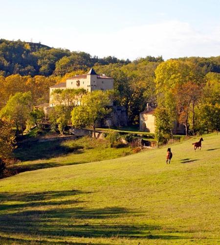 Chateau Le Quille - Image 1 - Les Brévières - rentals