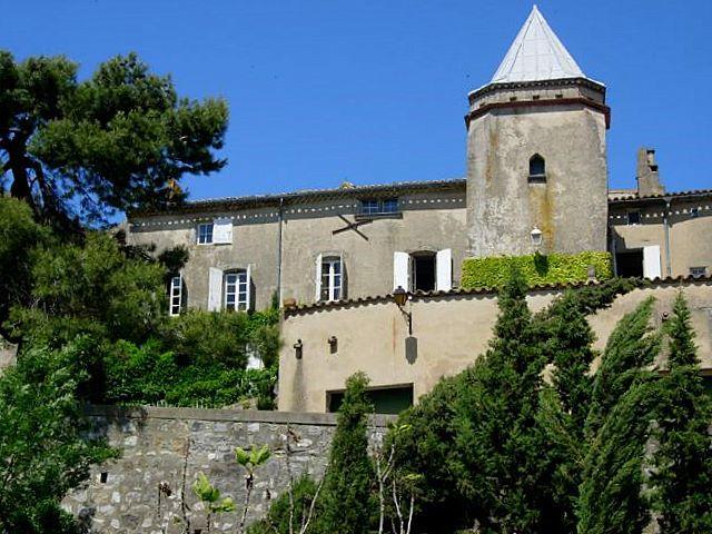 Chateau Carcassona - Image 1 - Bouilhonnac - rentals