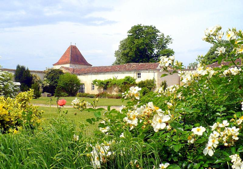 Domaine St Surin - Image 1 - Belluire - rentals