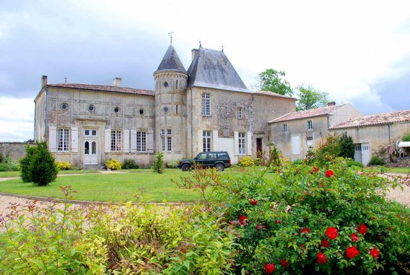 Chateau Serbise - Image 1 - Belluire - rentals