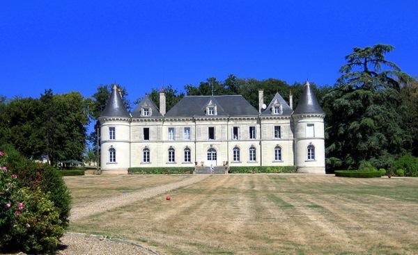 Chateau De Lanternes - Image 1 - Savigny-sous-Faye - rentals