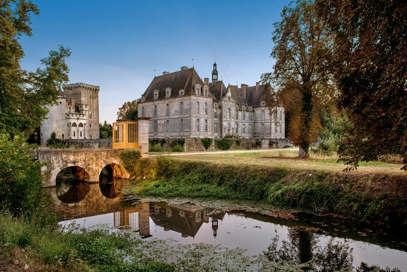 Chateau De St Louis Keep - Image 1 - Saint-Loup-Lamaire - rentals