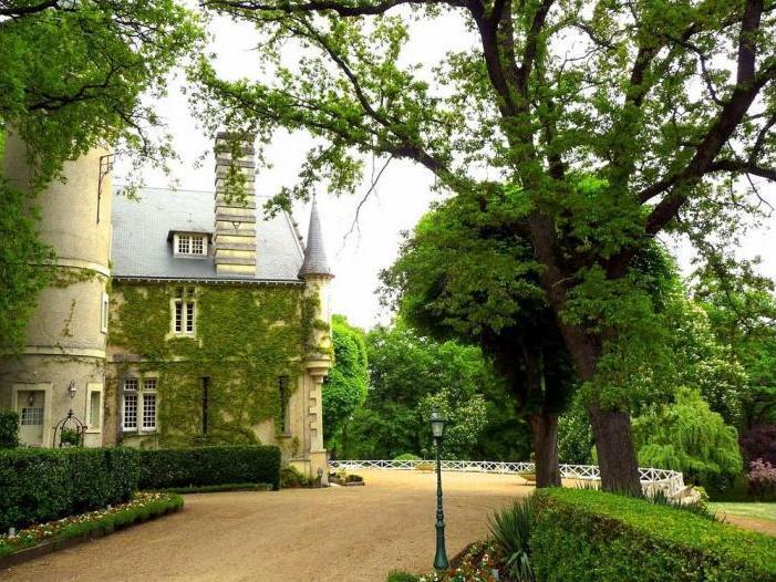 Chateau Paquerette - Image 1 - Doussay - rentals