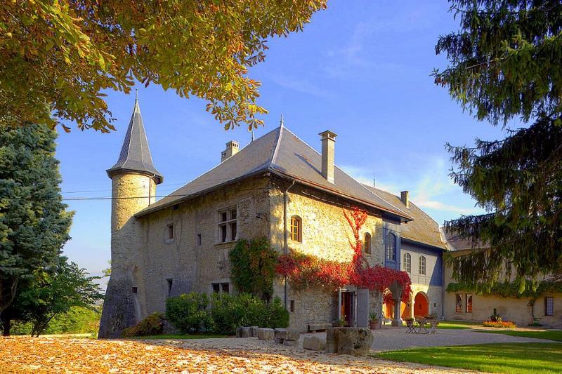 Chateau Ste Genevieve - Image 1 - Saint-Jean-de-la-Porte - rentals