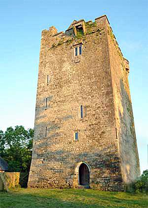 Towerhouse Castle - Image 1 - Kilkenny - rentals