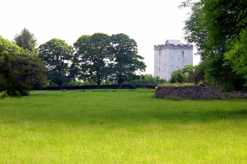 Deburgo Castle - Image 1 - Kilmaine - rentals